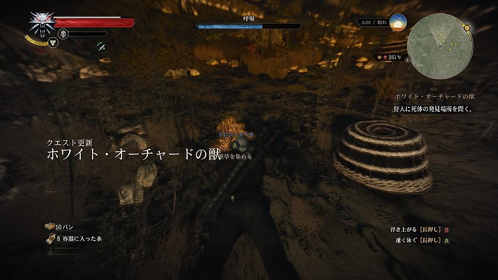 朝焼けの中のクロウメモドキ - Witcher 3