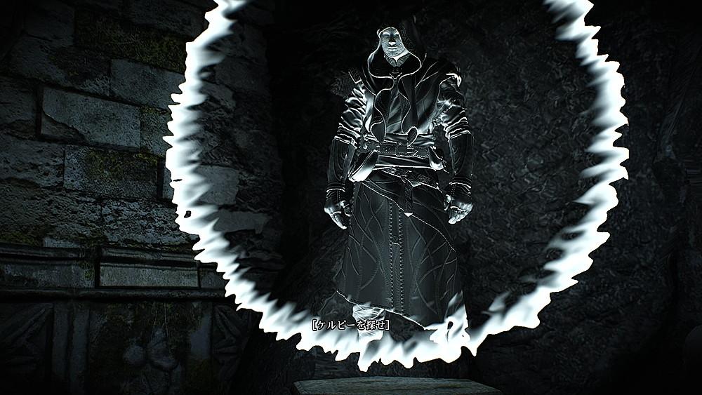 2度目の形態投影 - Witcher 3