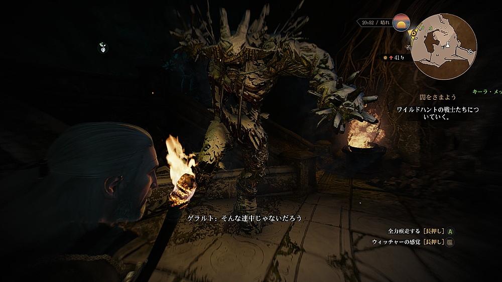 氷漬けのエルフの番人 - Witcher 3