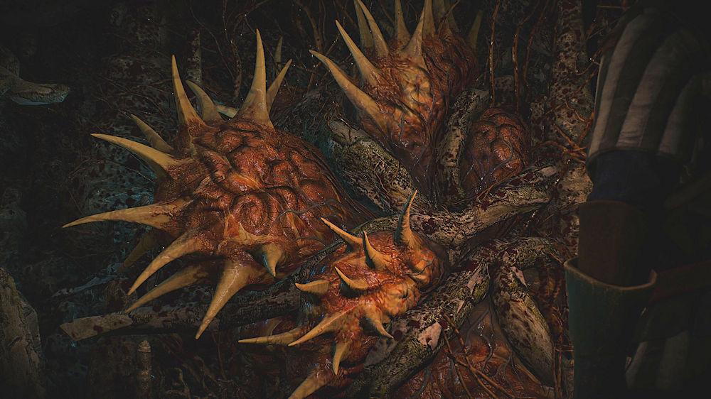 「囁きの丘」の地下の異形の魔物 - Witcher 3