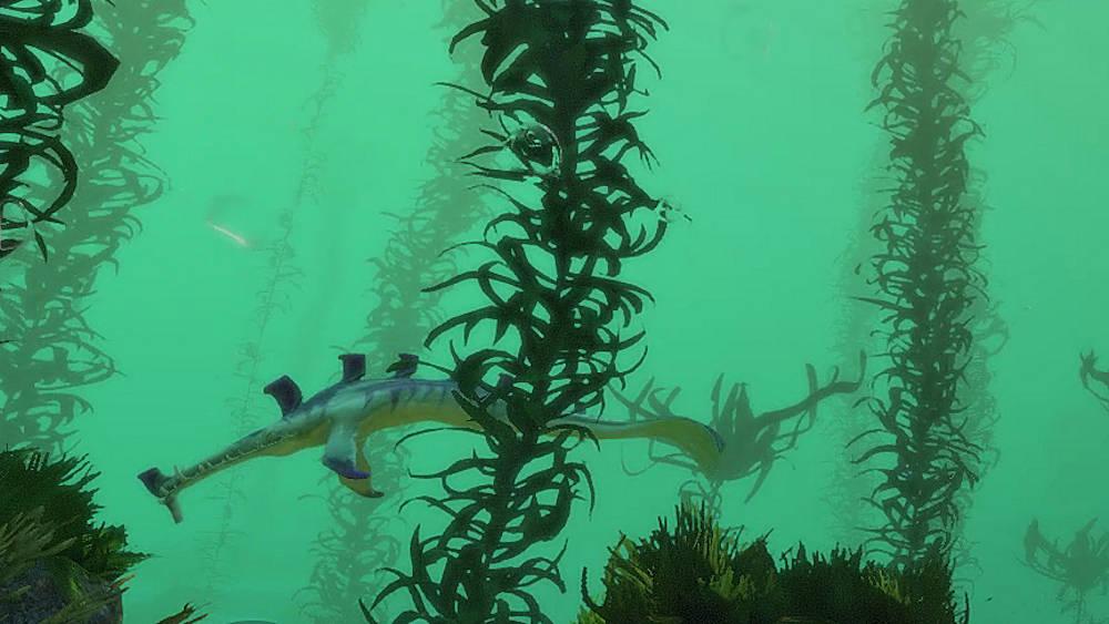 クリープバインの大きな魚