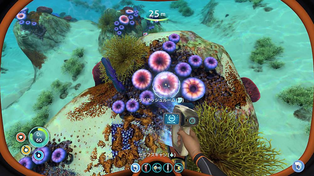 Subnauticaのサンゴ礁